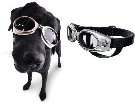Солнечные очки для собак