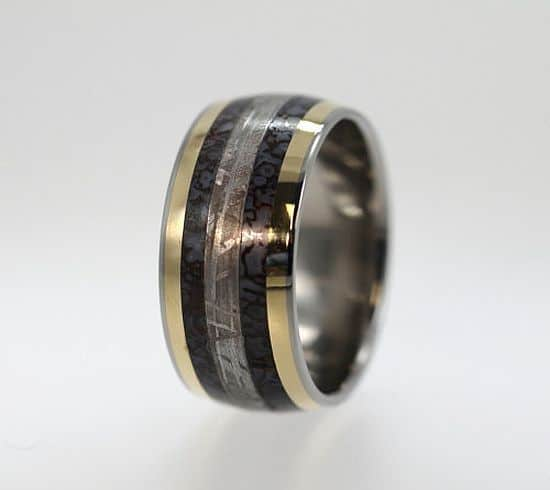 Dinosaur Bone ring Gibeon Meteorite ring