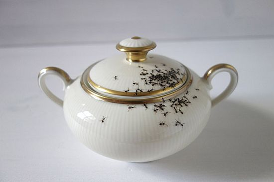 Hand-Painted Ants Crawling on Vintage Porcelain Dishes