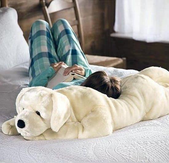 Labrador Dog Body Pillow