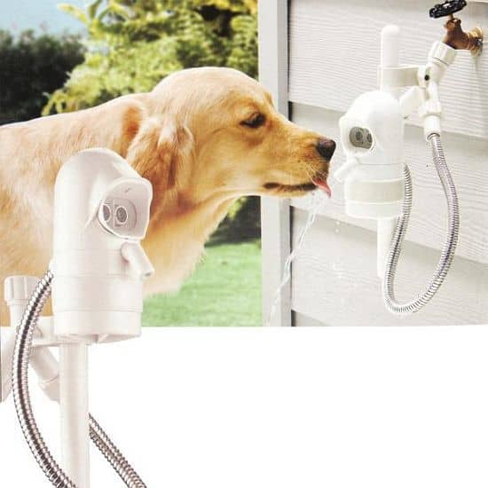 Sonar-Sensing Automatic Pet Fountain