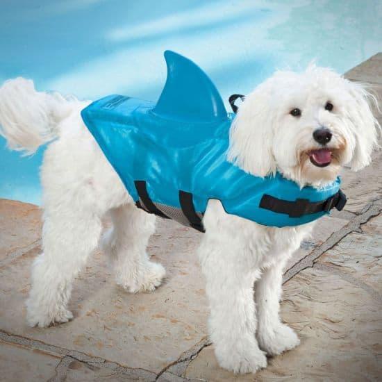 Shark Doggie Swim Vest