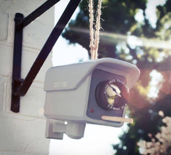 CCTV Birdhouse