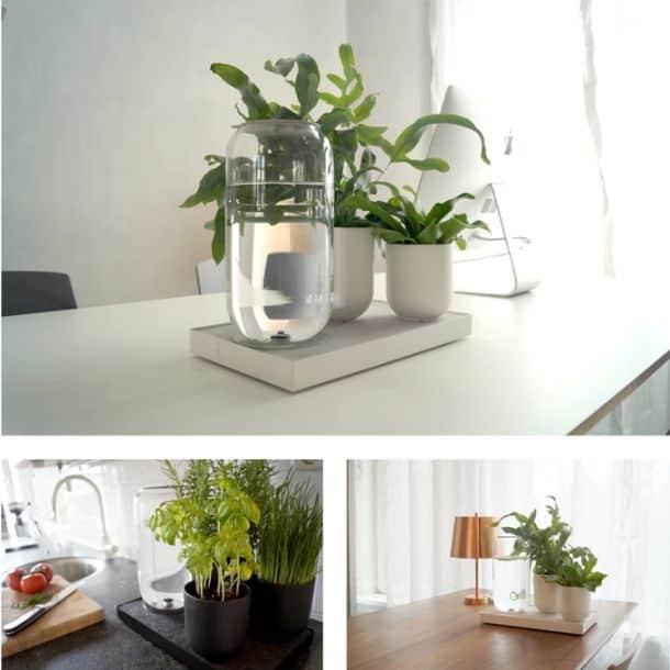 Устройство для автоматического полива комнатных растений Tableau