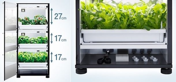 Шкаф для выращивания овощей U-ING