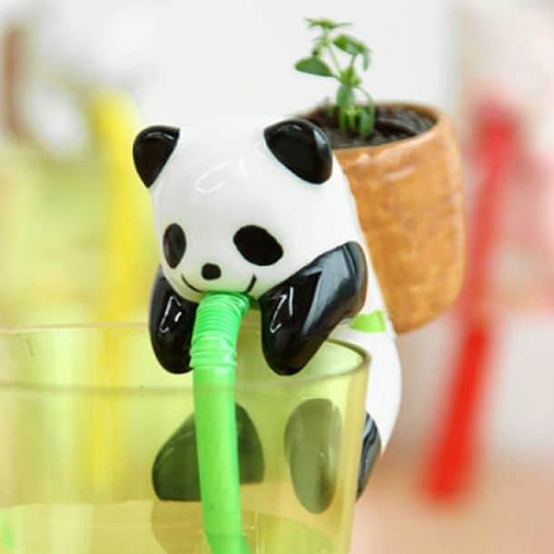 Панда-самополивайка