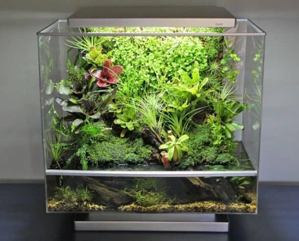 Умный биоаквариум Biopod Microhabitat