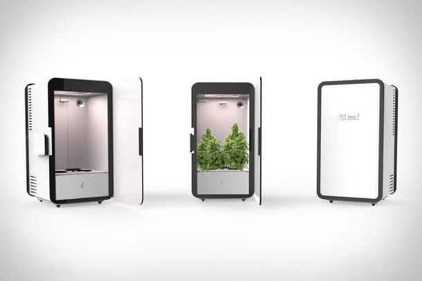 Конопли холодильник цена марихуаны в украине 2017