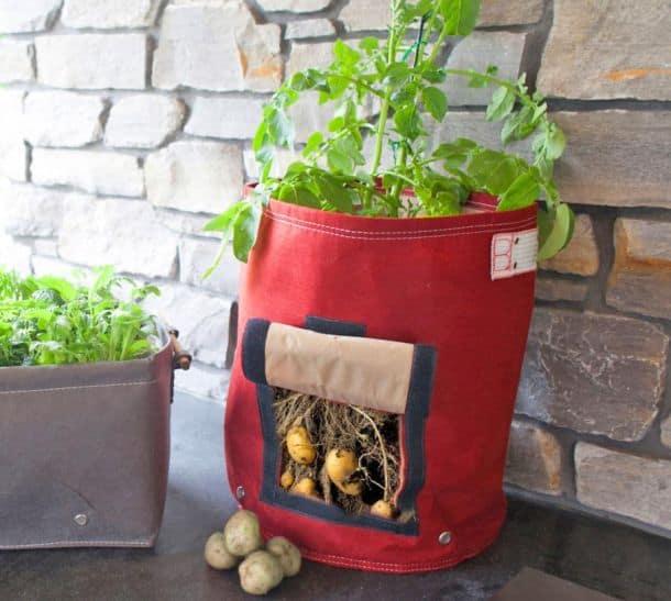 Мешок для посадки картофеля BloemBagz