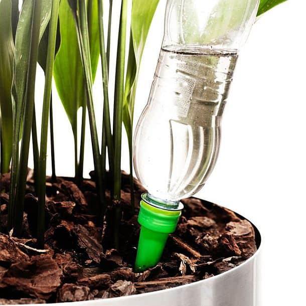Колпачки для самополива комнатных растений Sagaform