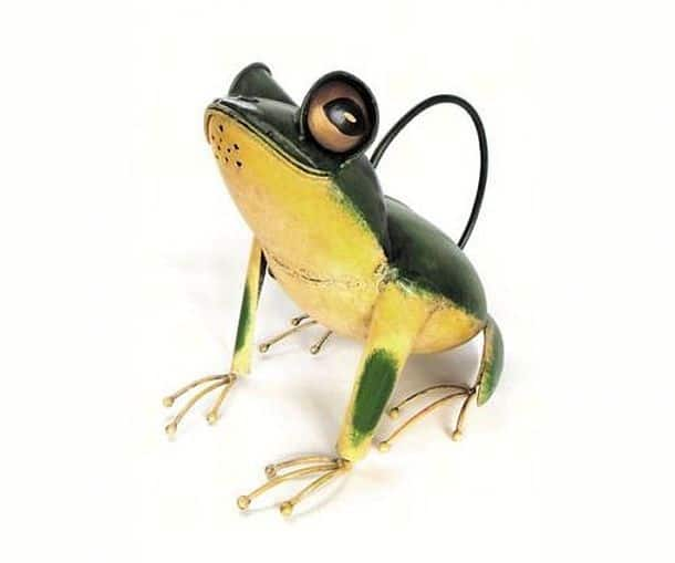 Лейка-лягушка Frankie