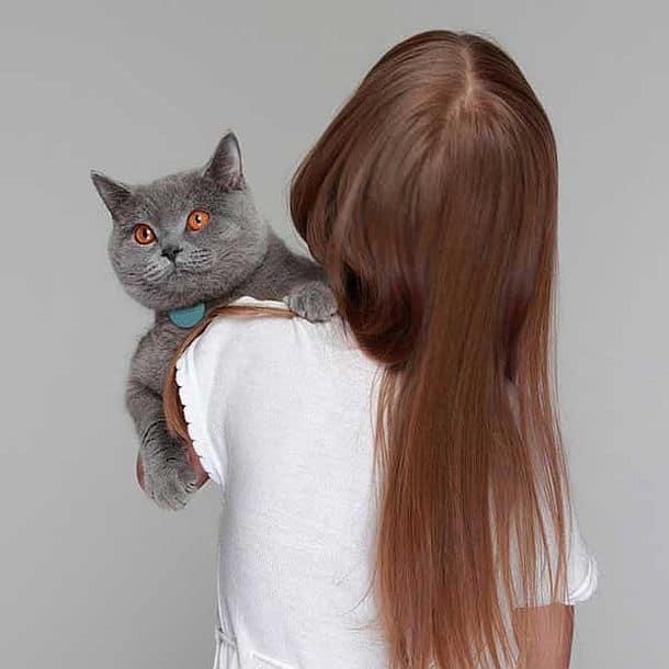 Медальон-маячок для кошек Tabcat