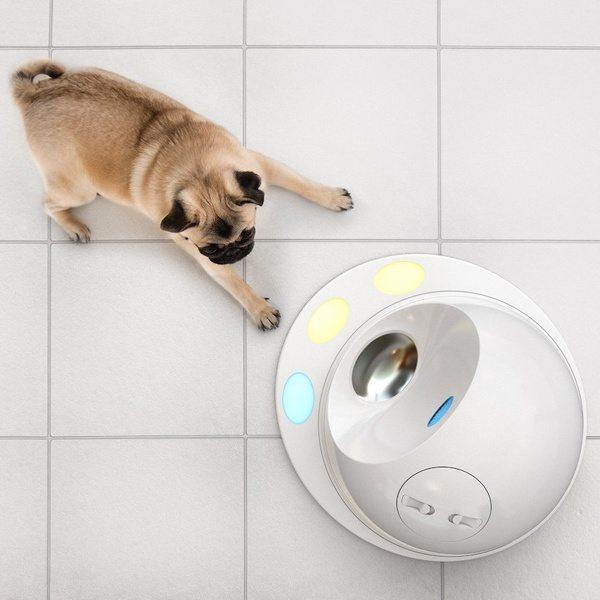Система развлечений для собак CleverPet