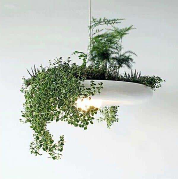 Комбинированный светильник с горшком для растений