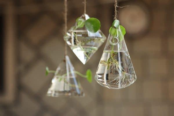 Подвесные вазы-террариумы