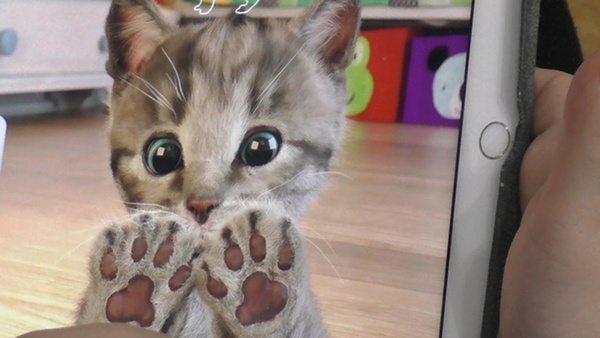 Приложение с котёнком для детского саморазвития Little Kitten