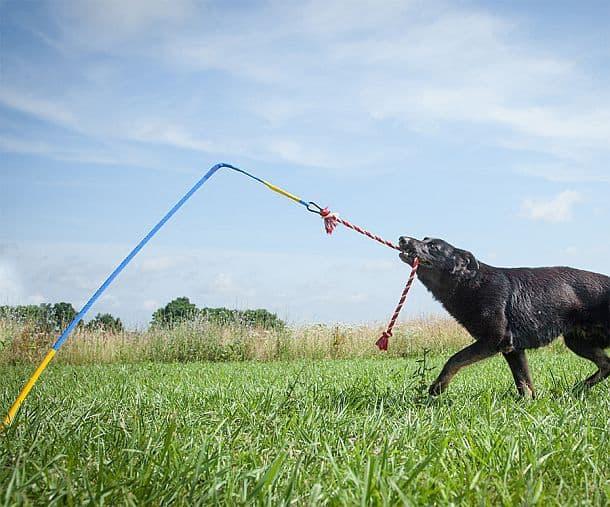 Интерактивная игрушка для собак Tether Tug