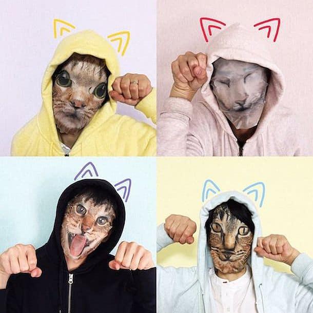 Ухаживающие маски для лица в виде кошачьих мордочек