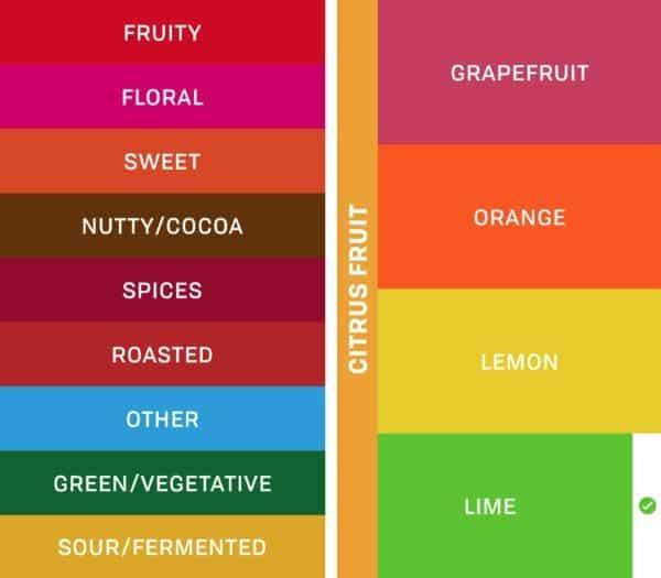 Palate — логбук для любителей кофе