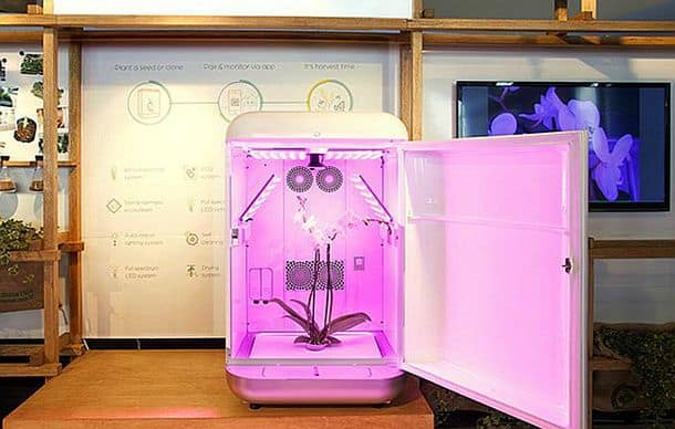 Домашняя гидропонная установка Seedo