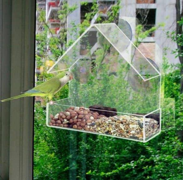 Прозрачная кормушка для птиц в виде домика