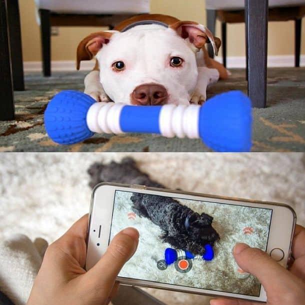 Высокотехнологичная игрушка для собак GoBone