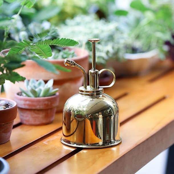 Медный опрыскиватель для растений Brass Plant Mister