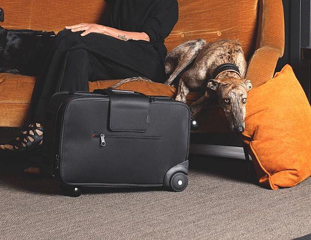 Шестиколесный чемодан Daard iby6