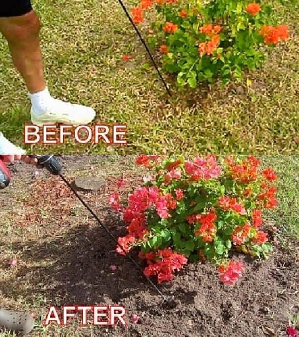 Приспособление для прополки сорняков и разрыхления почвы WeedNtill WT-1