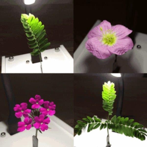 Устройство для анимации цветков EleksSwing