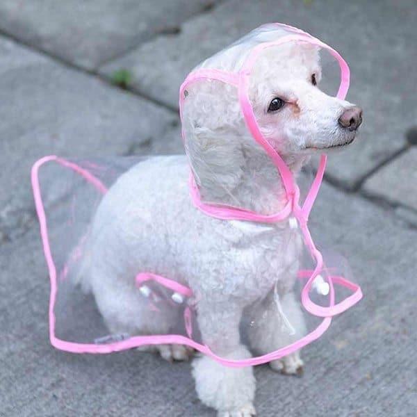 Дождевая накидка для собак