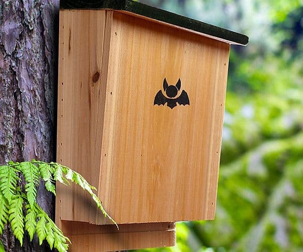 Домик для летучих мышей