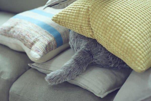 Японская роботизированная подушка в виде кошки Qoobo