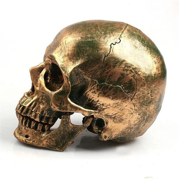Декоративный череп из пластика