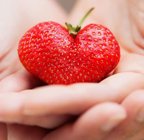 Формы для выращивания декорированных плодов