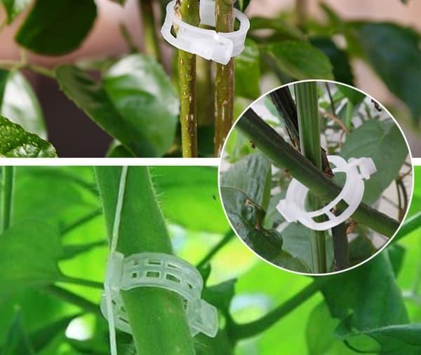 Пластиковые зажимы для растений