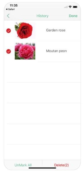 iplant - приложение для распознавания растений