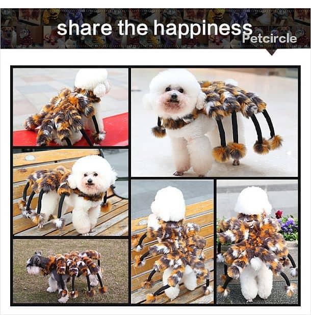 Костюм паука для кошек и собак