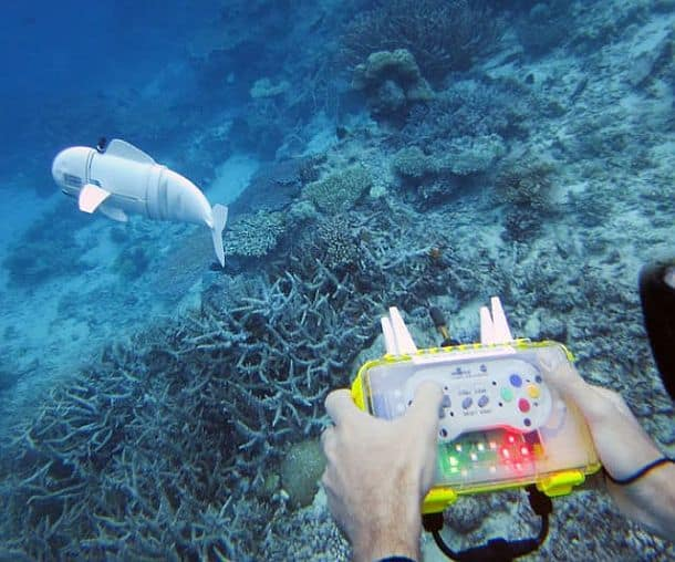 Рыба-робот SoFi