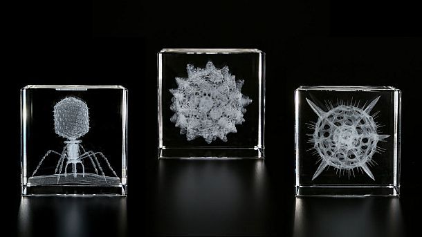 Стеклянные кубы с трехмерным лазерным изображением микроорганизмов Sola Cube Micro
