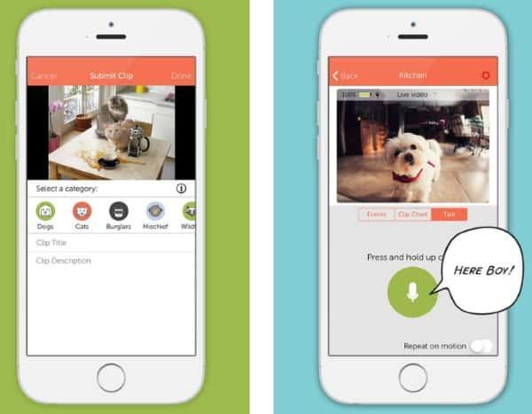 Manything - приложение которое превращает iPhone в IP-камеру
