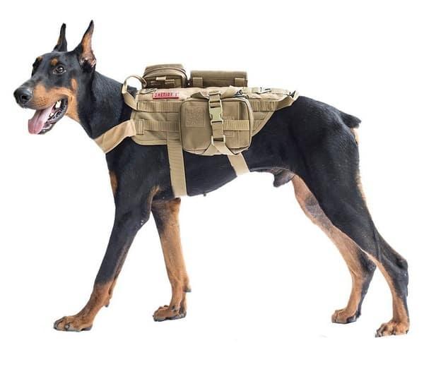 """Упряжка в стиле """"милитари"""" Onetigris Tactiacal Dog"""