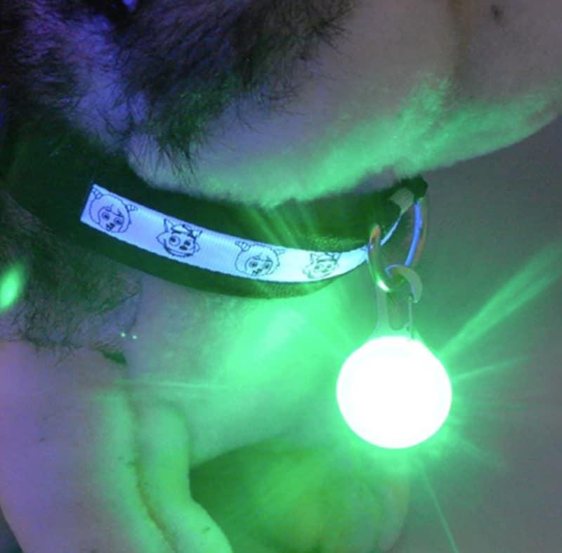 LED-кулон для собак и кошек