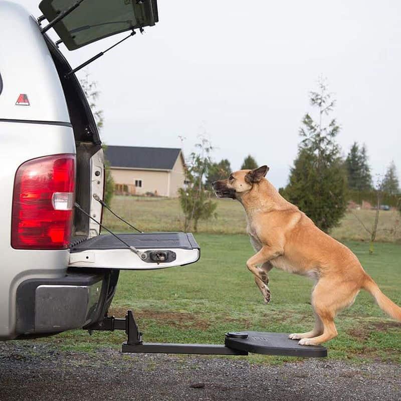 Откидная подножка для собак Heininger 3052
