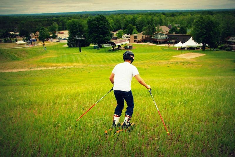 Лыжи для катания по траве Grasski