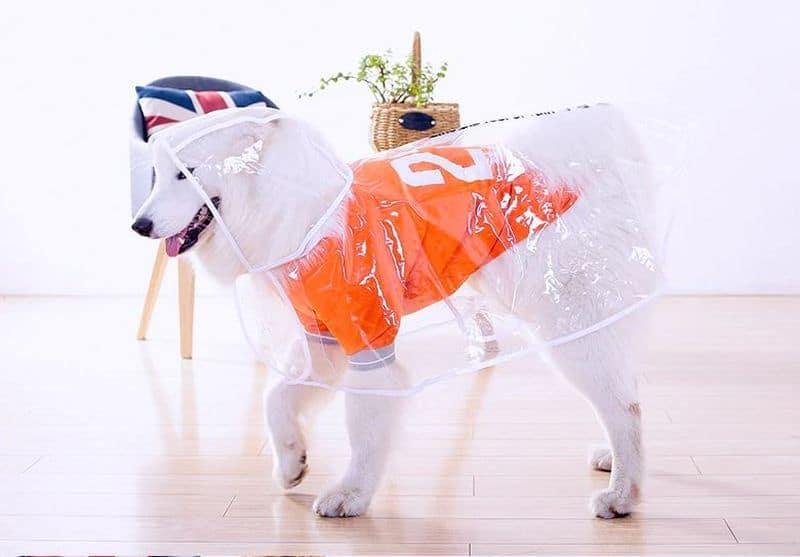 Дождевик для собак HOOPET