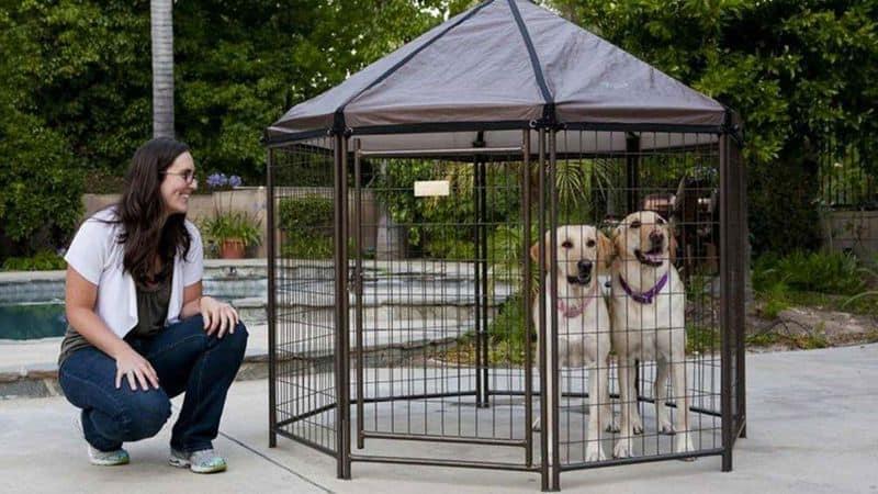 Клетка для содержания собак Pet Gazebo
