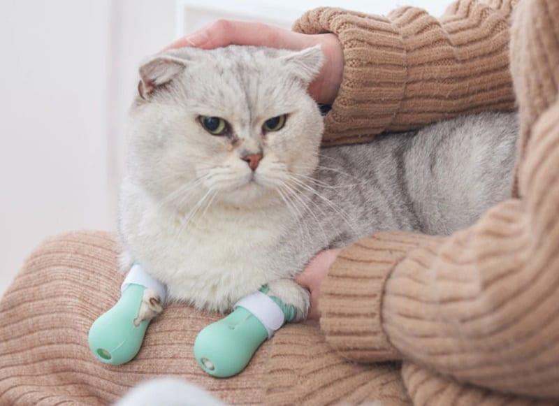 Силиконовые ботиночки для кошек
