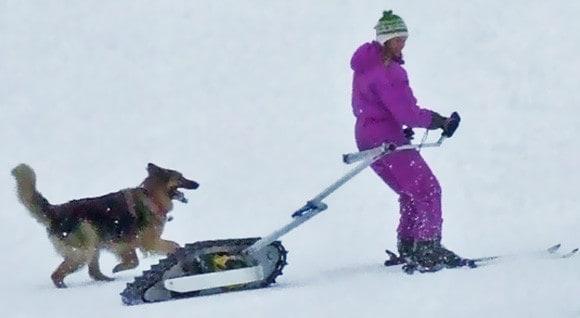 Мотовездеход для лыжников Skizee