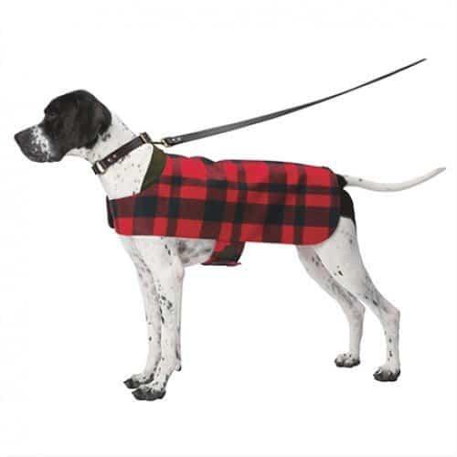 Непромокаемая жилетка для собаки